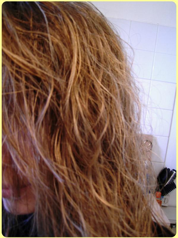cheveuxavant.jpg